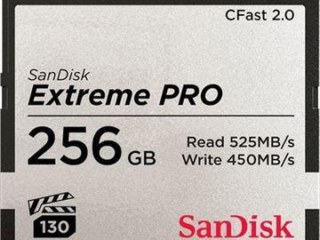 Udlejer: 2  x SanDisk CFast 2.0 Card 256GB