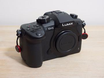 Lender: Panasonic GH5 V-Log 4K M43 Digital Mirrorless Cine Video Cam