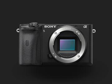 Lender: Sony Alpha A6600